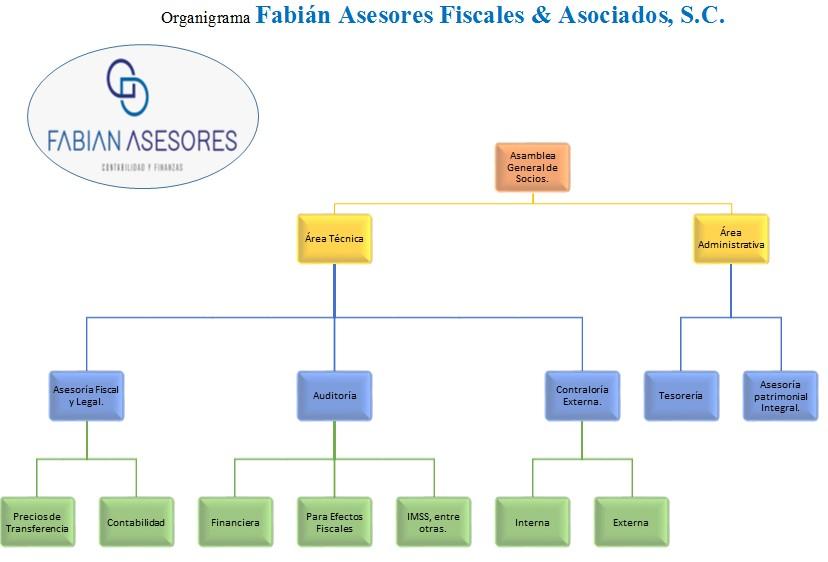 Fabián Asesores Organigrama
